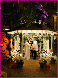 Viva Las Vegas Weddings | Ghoulish Gazebo Wedding
