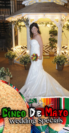 Cinco De Mayo Dream Wedding Package