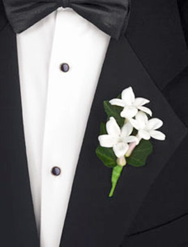 Wedding boutonnieres for the groom stephanotis boutonniere mightylinksfo