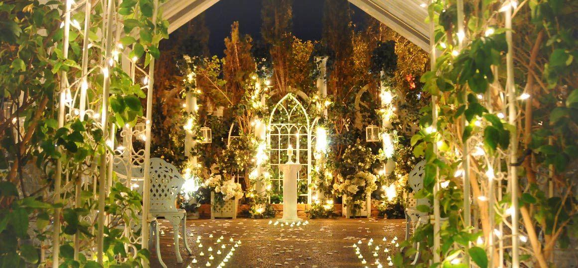 Garden Twilight Viva Las Vegas